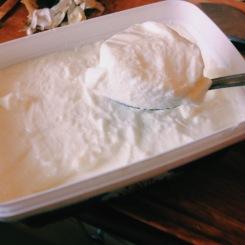 The yogurt!